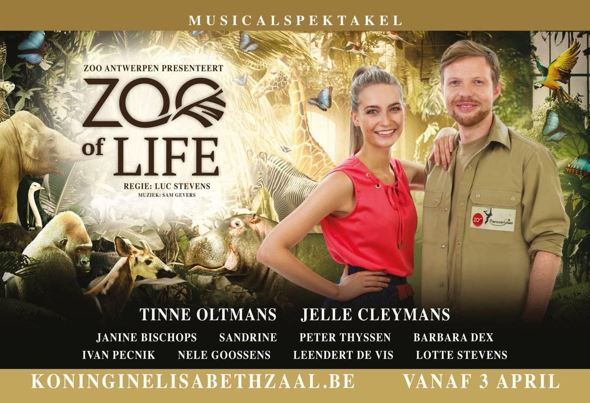 Musical ZOO of life
