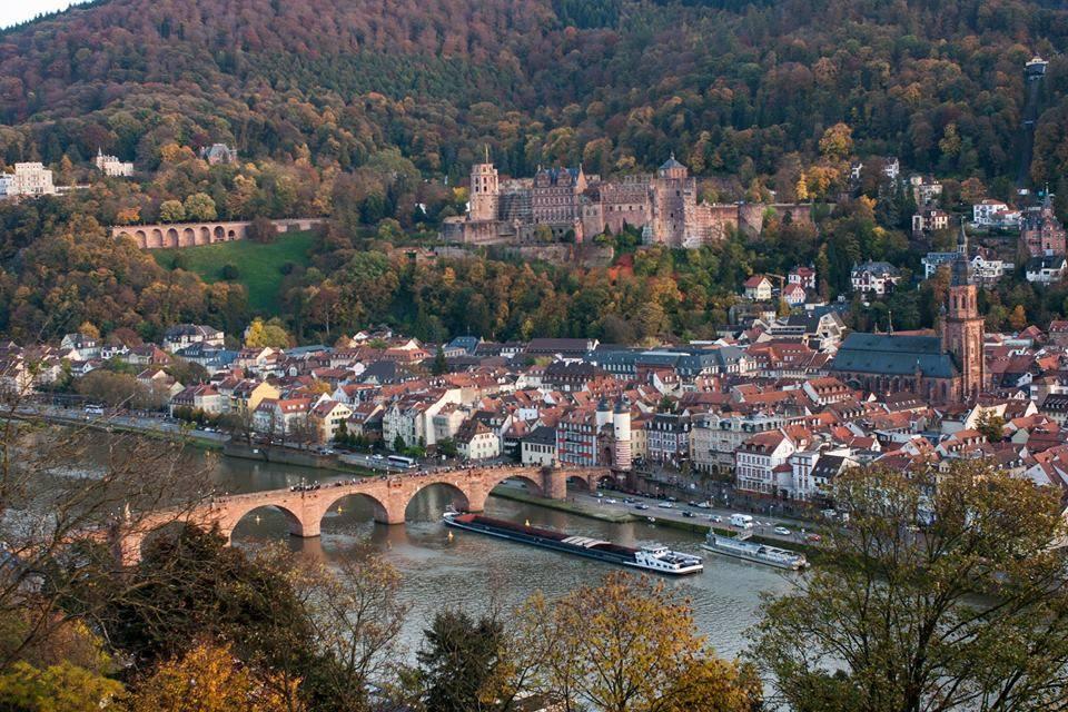 Rhein/Neckar