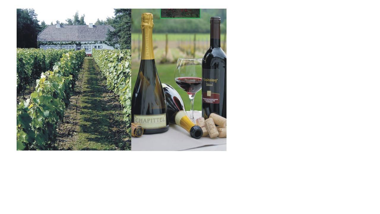 Begijnhof Herentals en wijndomein Kapittelberg in Herselt