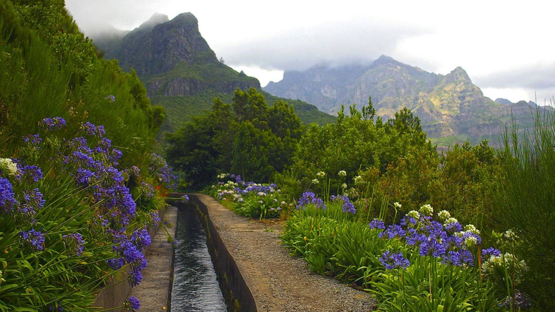 Madeira en Porto-Santo
