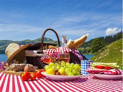 vtbKultuur Brussel-Oost picknickt