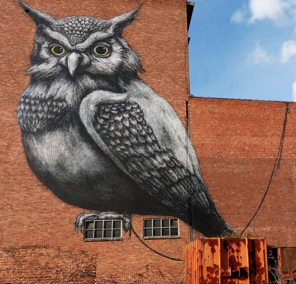 Street art wandeling Hasselt