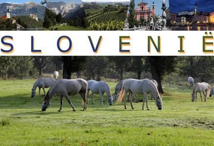 Reisreportage Slovenië (bij vtbKultuur Genk)