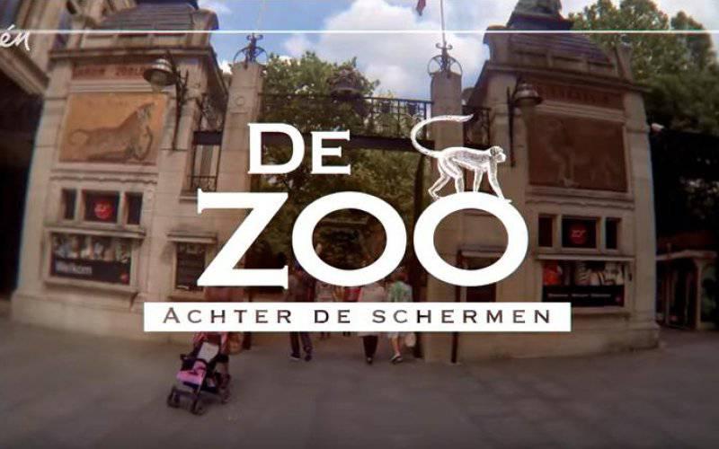 Bezoek aan de zoo achter de schermen