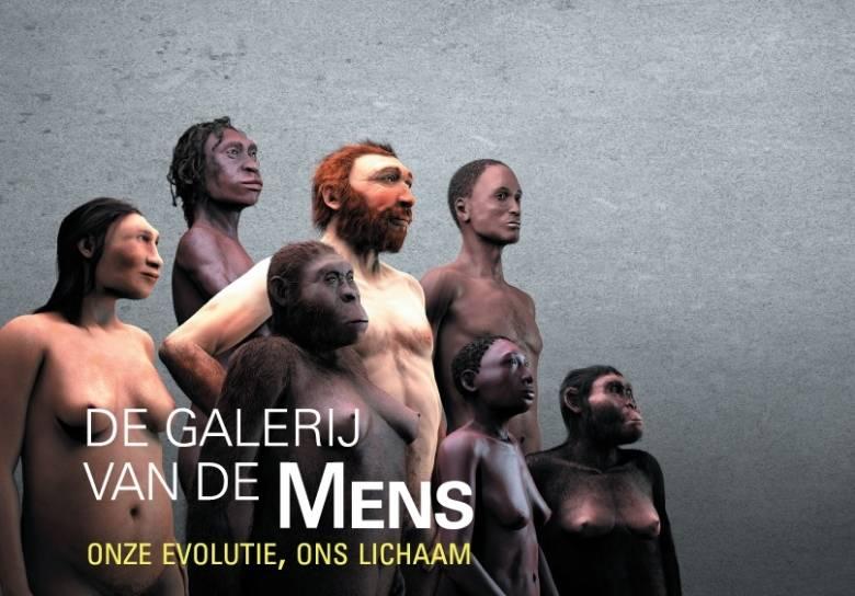 Van Sahel- anthropus tot Homo sapiens en van embryo tot volwassene.