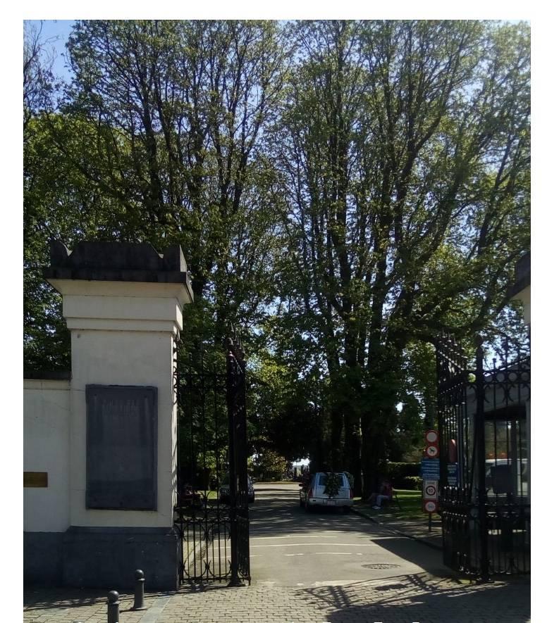 vtbkultuur Brussel Elsene-Etterbeek