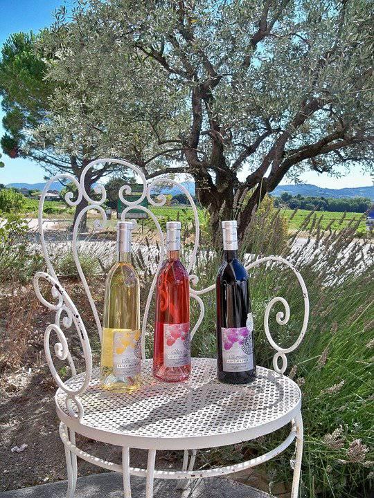 Wijncursus met thema: Van Alpen tot de Pyreneeën (Provence)