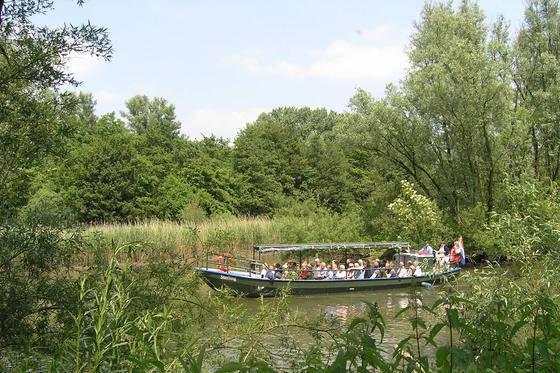 De Biesbos, Dordrecht en de Molens van de Kinderdijk