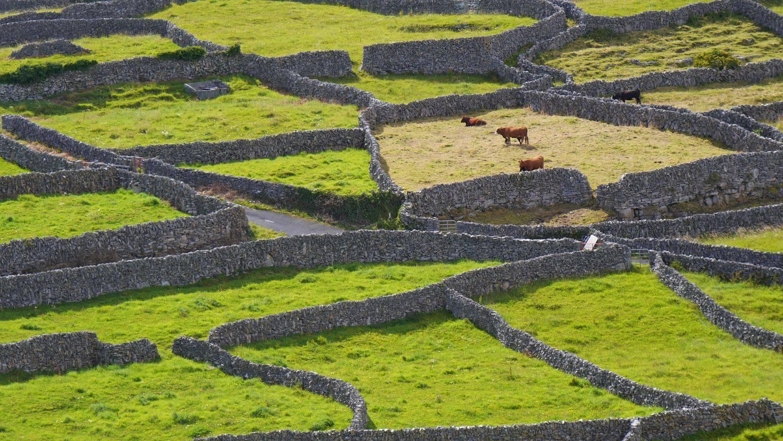 Reisverhalen: Ierland het magisch eiland van de Kelten