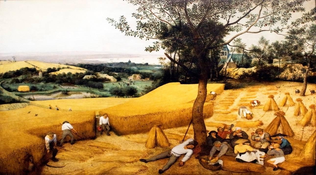 vtbKultuur Picknickt rond de Abdij van Affligem