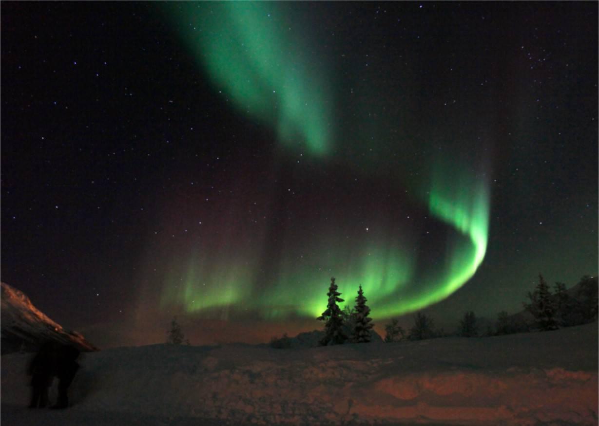 Tromsø, Noord-Noorwegen. Op zoek naar het Noorderlicht.