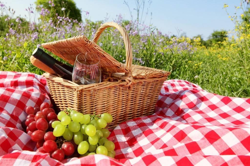 Picknick in Frans-Vlaanderen