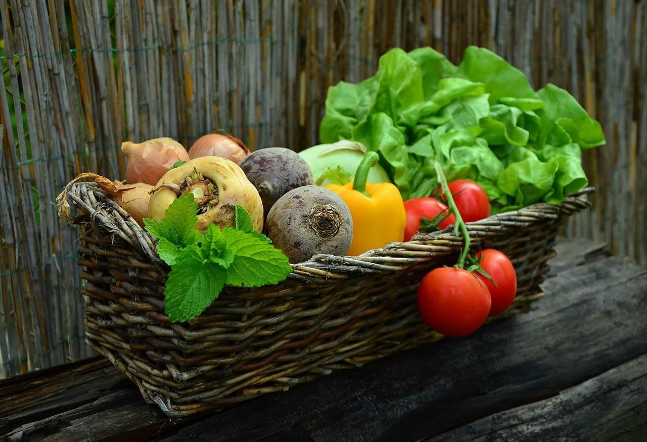 De smaak van gezonde voeding!