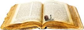 Sprookjesvertelling voor kinderen (5 tot 8j)