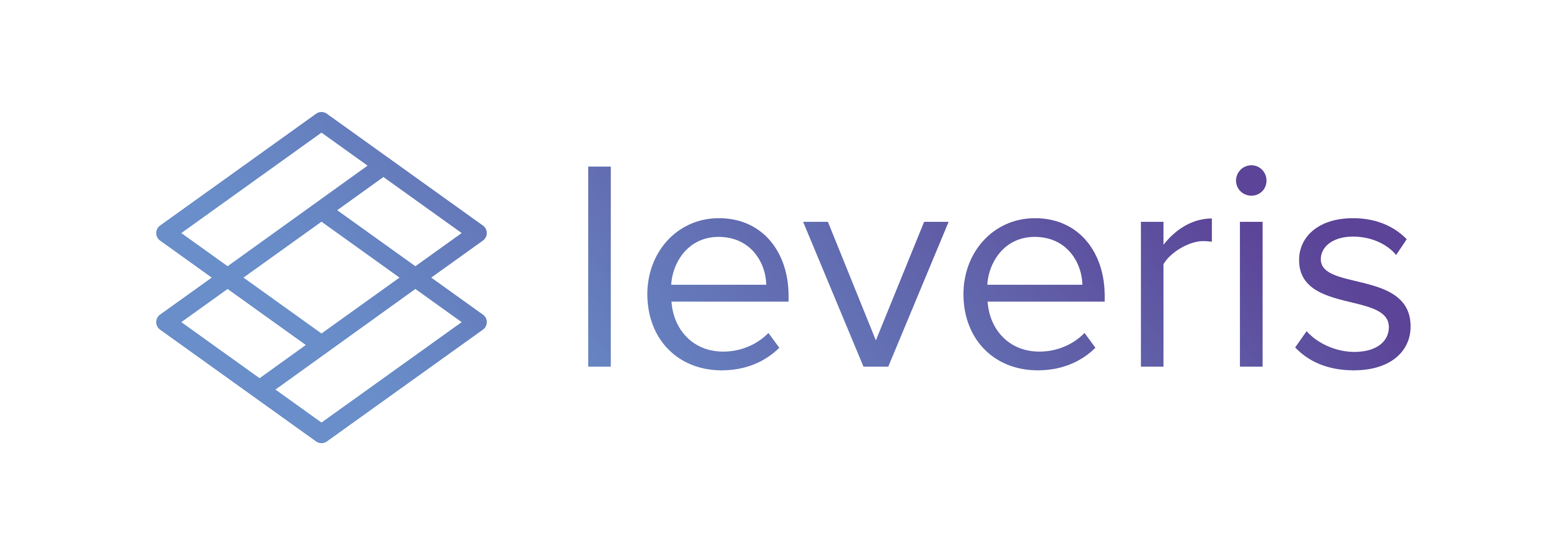 Leveris logo300 gradient