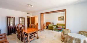 Geräumiges Apartment in Palma de Mallorca (Thumbnail 3)