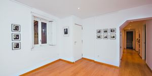 Apartment in the heart of Palma (Thumbnail 5)