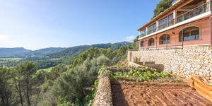 30.000 Quadratmeter großes Grundstück in Establiments - viele Möglichkeiten mit einzigartiger Villa (Thumbnail 2)
