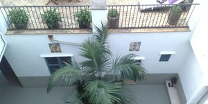 Apartment in Palma - Altstadtwohnung mit privatem Patio (Thumbnail 3)
