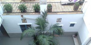 Apartment with private terrace and garden area in the centre of Palma de Mallorca (Thumbnail 3)