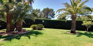 Sol de Mallorca: Stately sea views villa on spacious property (Thumbnail 4)