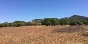 Building plot near Es Carritxo near Felanitx with building permit (Thumbnail 6)