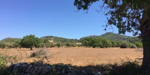 Building plot near Es Carritxo near Felanitx with building permit (Thumbnail 3)
