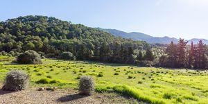 Finca en Son Servera - Landhaus mit traumhaftem Landschaftsblick (Thumbnail 3)