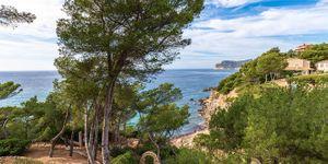 Luxusvilla in erster Meereslinie in Costa de la Calma (Thumbnail 5)