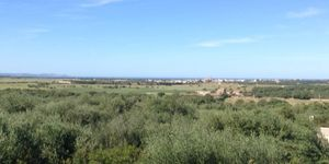 Mediterranes Anwesen nah am Strand in Ses Salines, Mallorca (Thumbnail 9)