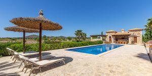 Nově postavený venkovský dům z přírodního kamene v Porreres s olivovým hájem (Thumbnail 5)