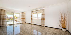 Penthouse in Palma - Großzügige Wohnung mit 3 Terrassen (Thumbnail 4)