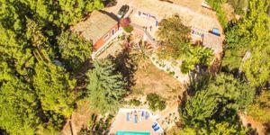 Finca in Esporles - Schönes Landhaus mit Gästewohnungen (Thumbnail 9)
