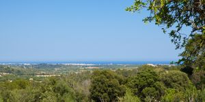 Fantastic plot with sea views close to Calas de Mallorca (Thumbnail 5)