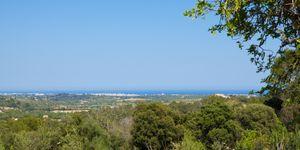 Grundstück in Manacor - Bauland mit Meerblick nah an Calas de Mallorca (Thumbnail 5)