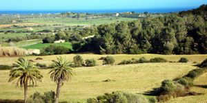 Fantastic plot with sea views close to Calas de Mallorca (Thumbnail 7)