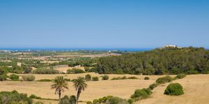 Fantastic plot with sea views close to Calas de Mallorca (Thumbnail 1)