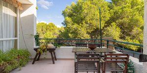 Reihenhaus in Sol de Mallorca - Mediterrane Immobilie nah am Strand (Thumbnail 6)