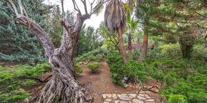 Luxury villa with large plot in Esporles (Thumbnail 9)