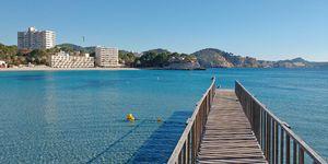 Meerblick Apartment zum Renovieren am Strand von Paguera (Thumbnail 10)