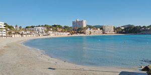 Meerblick Apartment zum Renovieren am Strand von Paguera (Thumbnail 8)