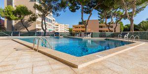 Meerblick Apartment zum Renovieren am Strand von Paguera (Thumbnail 7)