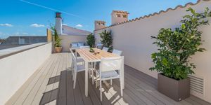 New apartments in Santa Maria del Cami (Thumbnail 6)