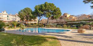 Penthouse mit Blick in die Bucht von Palma (Thumbnail 1)