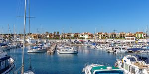 Fantastic apartment with sea views and within walking distance to the beach in Sa Rapita (Thumbnail 3)