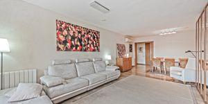 Apartment in Palma - moderne Wohnung mit schönem Blick (Thumbnail 4)
