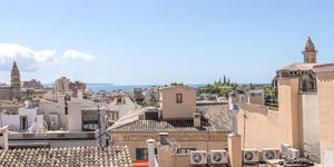 Apartment in Palma - Luxusimmobilie in der Altstadt (Thumbnail 10)
