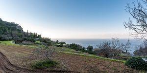 Finca in Banyalbufar - Landhaus zum Renovieren im Westen Mallorcas (Thumbnail 1)