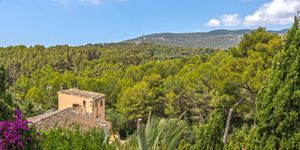 Haus in Palma - Herrenhaus mit großem Grundstück (Thumbnail 1)