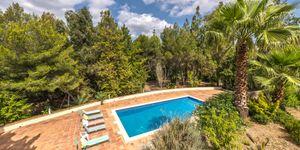 Haus in Palma - Herrenhaus mit großem Grundstück (Thumbnail 8)